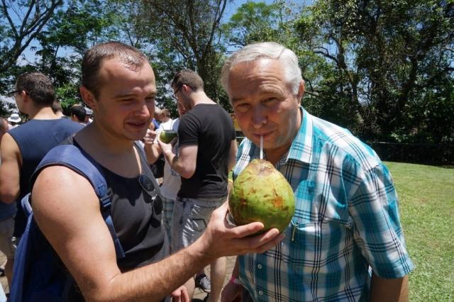 Tropische Früchte.